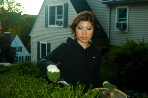 Angela Trimming Backyard Boxwoods 2008